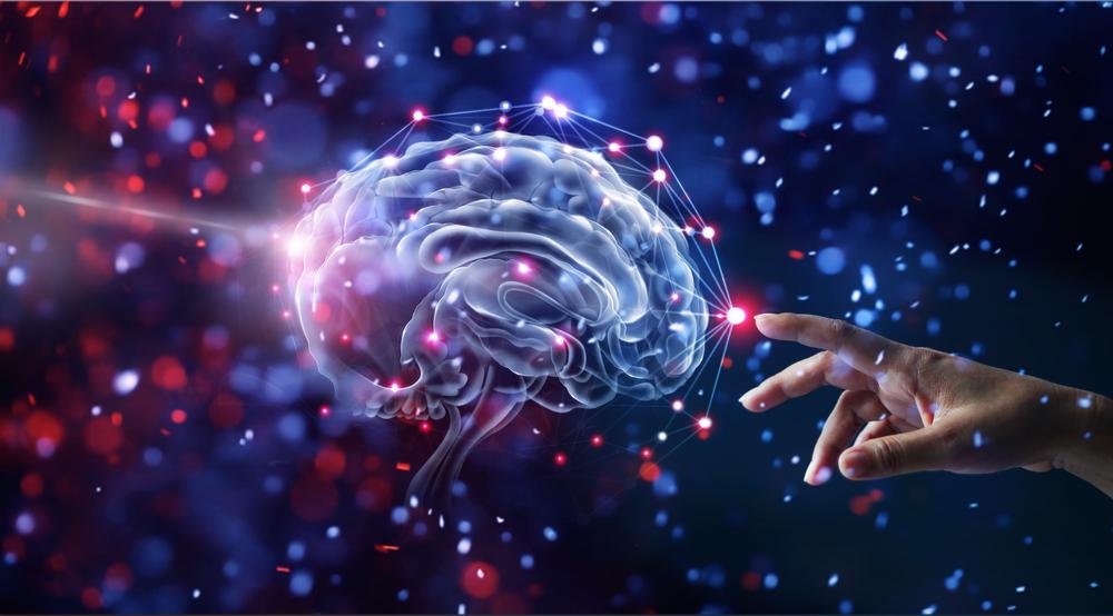 思い込みを捨て願望を叶える最強の成功脳とは?