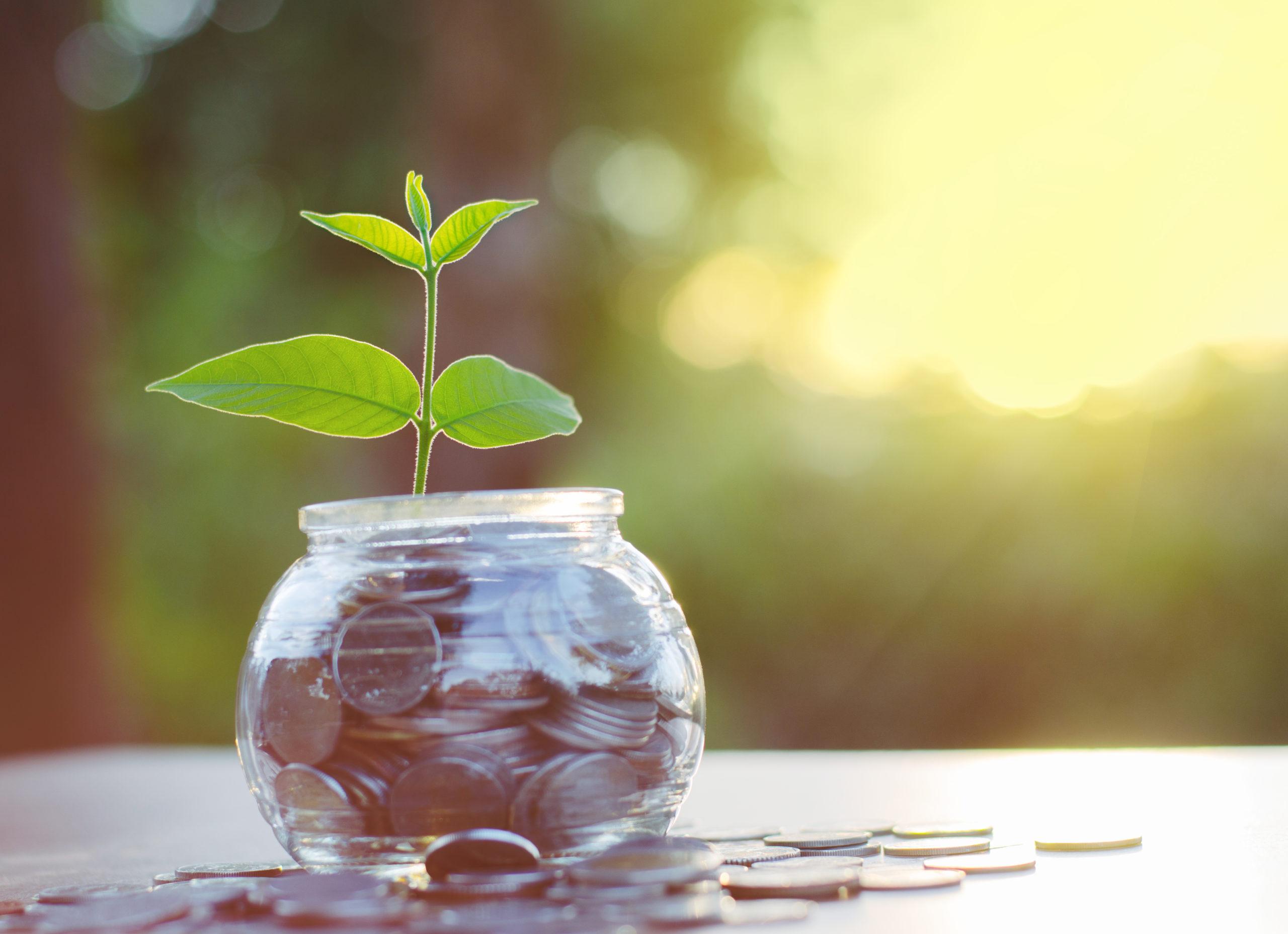【幸せなお金持ちの成功者に学ぶ】潜在意識を書き換えて、お金を引き寄せる方法